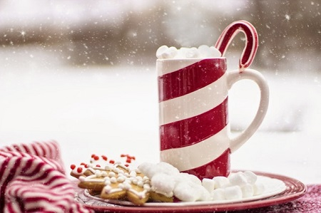 cup of hot drink with marshmallows and candy cane with biscuits on a plate